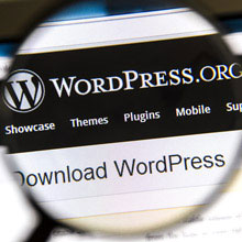 Wordpress Optimizasyon